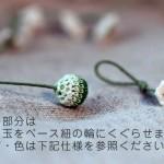 sophora_00011